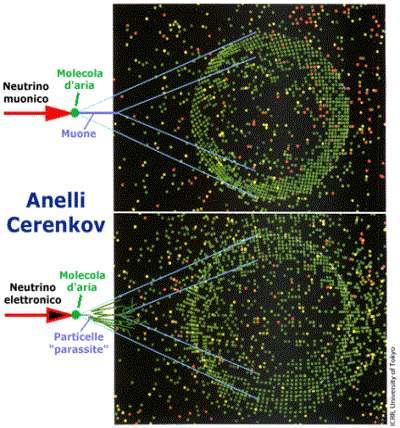 Anelli Cerenkov nei rilevatori di neutrini