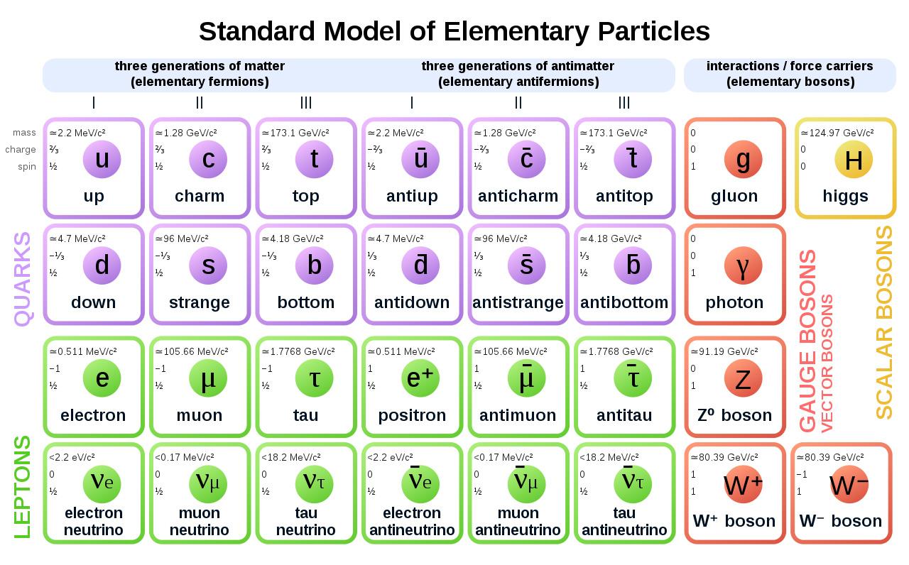 Il modello standard delle particelle elementari
