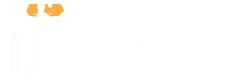 Mitiche Stelle - Cookie policy - Logo