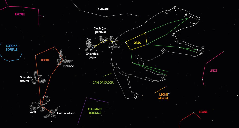 Le costellazioni che circondano l'Orsa Maggiore e le stelle che, sotto forma di uccelli, partecipano alla caccia alla grande Orsa